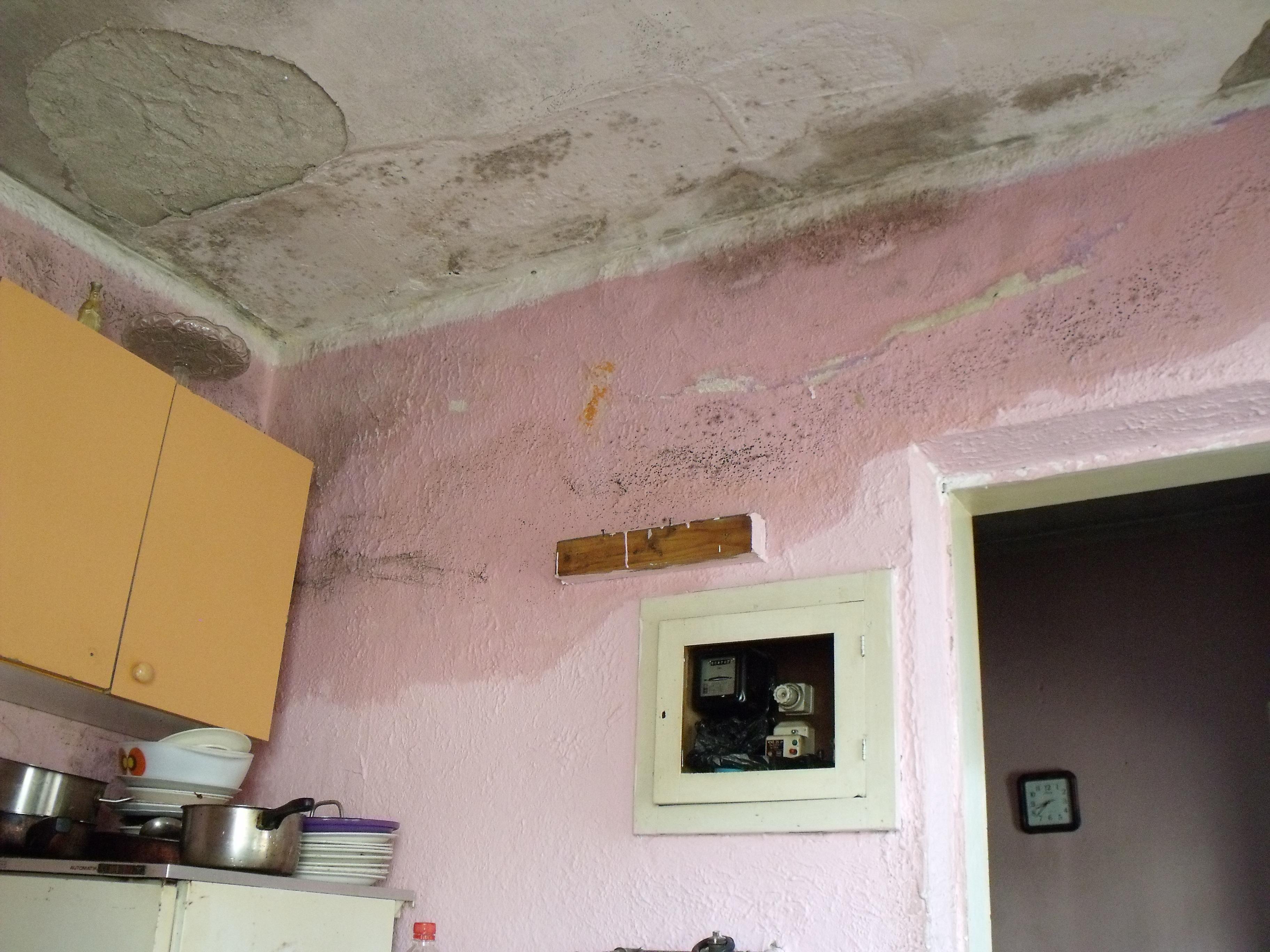 situation der roma in serbien › flüchtlingsrat niedersachsen